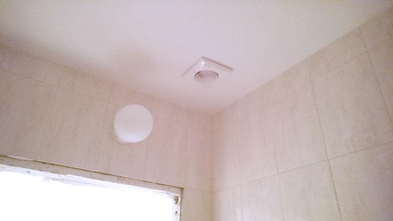 вытяжка ванной комнаты, светильник
